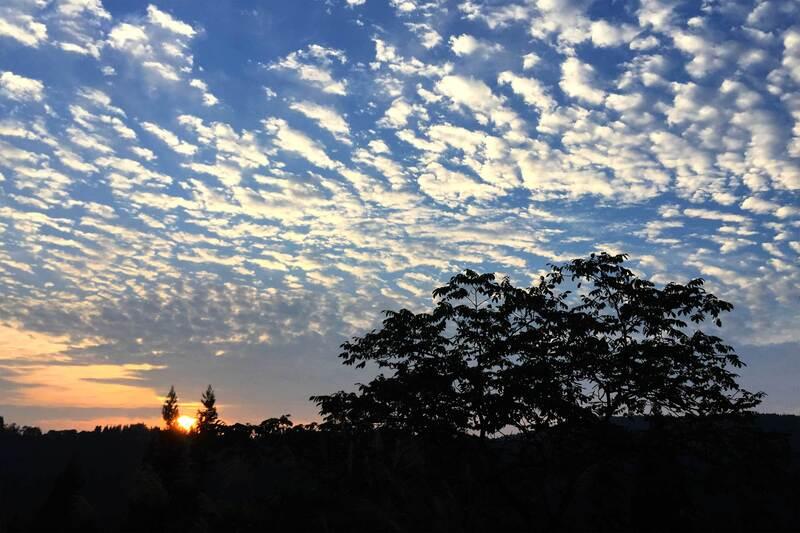 夜明けの空に広がる鱗雲 切欠 - 長野県 栄村